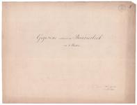 19231-Y20.0 Gegevens omtrent de Buurserbeek in 3 bladen. Voorblad