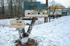 4117 DBUITERWIJK-001512 Winter en Sneeuw in Zwolle-Doepark Nooterhof aan de Goertjesweg, 2013-01-22