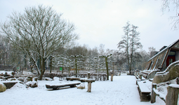 4118 DBUITERWIJK-001513 Winter en Sneeuw in Zwolle-Doepark Nooterhof aan de Goertjesweg, 2013-01-22