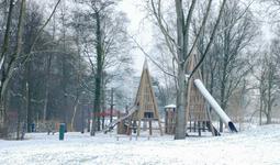 4121 DBUITERWIJK-001517 Winter en Sneeuw in Zwolle-Park de Weezenlanden, 2013-01-22