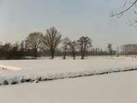 4144 DBUITERWIJK-001540 Winter en Sneeuw in Zwolle - Aa-landen-dijklanden, 2013-01-22