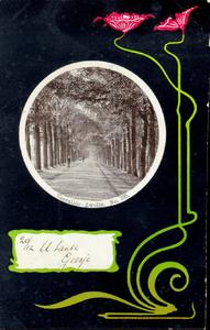 2363 PBKR3965 Jugendstil bloem op zwarte ondergrond. In cirkel inzet, gezicht op de Veerallee, ca. 1900., 1900-00-00