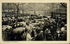 4964 PBKR2649 Veemarkt op de Harm Smeengekade (toen Beestenmarkt), ca. 1925. De markt staat vol met vee. Boeren ...