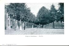 5698 PBKR2812 De Rhijnvis Feithlaan vanaf nr. 1 (ter hoogte van de Bagijnesingel naar het oosten. In het midden de ...