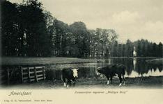 13193 Gezicht op de zwanenvijver in het park van de buitenplaats Heiligenberg (Heiligenbergerweg 5) te Leusden, met op ...
