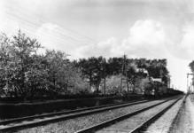 163253 Afbeelding van een goederentrein getrokken door de stoomlocomotief nr. 344 (serie 300/400; nrs. 301-479; later ...