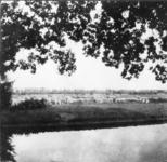 94135 Gezicht op een schaapskudde langs de Tolakkerweg te Achterwetering (gemeente Maartensdijk). N.B. De gemeente ...