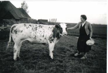 HGOM00000149 De prijskoe 1959 met Neeltje Vroom-Wijker met op de achtergrond boerderij J.C. Hooiberg/cq. C. Berkhout. Monica