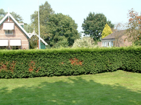 HGOM00000704 Genomen vanuit de tuin van Edammerdijkje 1, rechts op de foto Gruttostraat