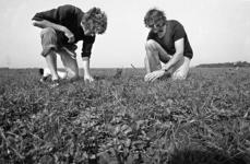 RJ000000896 Jan Boom (l.) en Jan van der Snoek werken op het land van hun biologisch en energiebewust boerenbedrijf De ...