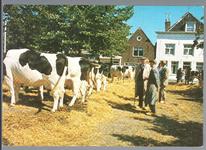 WAT001012830 Koemarkt. Op de kop van de koemarkt verhandelde men al sinds 1612 koeien, ossen, paarden, varkens en ...