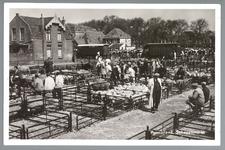 WAT001013175 Schapenmarkt aan de Koemarkt te Purmerend. Op de kop van de koemarkt verhandelde men al sinds 1612 koeien, ...