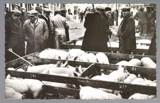 WAT001013179 De varkensmarkt. Tot 1973 werd er op dinsdag de varkensmarkt gehouden in de Willem Eggertstraat en op het ...