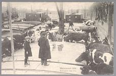 WAT001013255 Als gevolg van een zware noordwester storm brak in januari 1916 de Waterlandse Zeedijk tussen Monnickendam ...