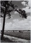 WAT001000485 Boerenleven in de Beemster.