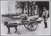 WAT001001025 Foto: koopman Johannes Hermanus van der Naaten met zijn hondenwagen op de Westersingel in Edam.Let op de ...