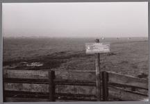 WAT001001139 Het Ilperveld is een natuurgebied in de gemeente Landsmeer dat eigendom is van de stichting Landschap ...