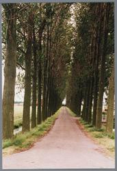 WAT001001664 Foto: oprijlaan naar de stolpboerderij aan de Kwadijk nummer 6.