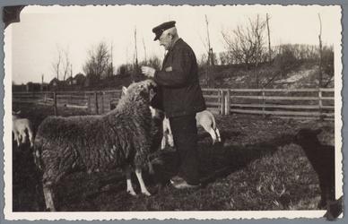 WAT001001866 Foto: omroeper Evert Oudekerk bij ''zijn'' schapen.