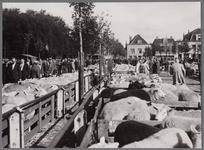 WAT001003364 Schapenmarkt op de Koemarkt.Op de kop van de koemarkt verhandelde men al sinds 1612 koeien, ossen, ...