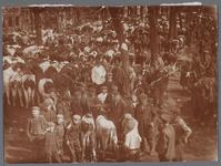 WAT001003366 Koeienmarkt te Purmerend. Op de kop van de koemarkt verhandelde men al sinds 1612 koeien, ossen, paarden, ...