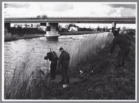 WAT001009682 Duiker aan het werk in de Purmerringvaart.Met in het midden een viaduct over de Purmerringvaart voor de N244.