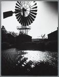 WAT001010271 Bemaling Kwadijkerkoog (Koogmolen) Watermolen , model roosmolen of windmotor bij Kwadijk.(Wordt ook als ...