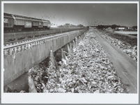 WAT001016029 VAM Compost. Stortplaats van afval.