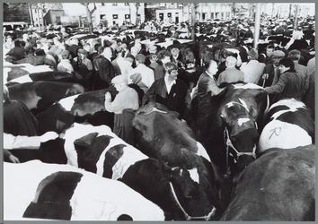 WAT001016201 Overvolle dinsdagmarkt. Veehandelaren met hun vee op de Koemarkt.