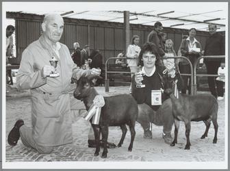 WAT001016207 Dwerggeiten Vereniging Noord-Holland organiseerde een gietenshow in de 'Nukahal' te Purmerend. Elf ...