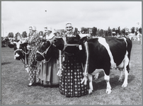 WAT001016430 Veetentoonstelling. De koeien lopen er mooi bij.