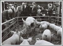 WAT001016445 Veetentoonstelling. Bezoekers bij de varkensstal.