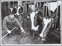WAT001016448 Henk de Gier stapt op na vier jaar voorzitterschap Centrum Landbouw en Milieu (CLM) . Hij voert de koeien ...