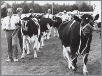 WAT001016428 Veetentoonstelling. De koeien lopen er mooi bij.