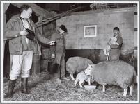 WAT001016449 Radio de Boer op. Opname voor radioprogramma op boerderij.
