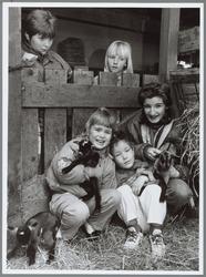 WAT001016490 Moeder met haar kinderen op kinderboerderij de Ridder