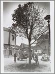 WAT001016547 Kastanjeboom voor de Purmaryn. Hoveniers werken het plantvak af.