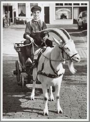 WAT001017425 Stefan Wittteman in bokkenwagen tijdens de 79ste veetentoonstelling in Purmerend. Het melkwagentje is hier ...