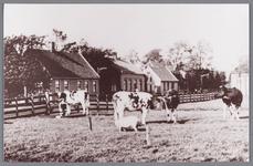 WAT002000537 Op plek van speeltuin achter de boerderij van Hermanus (Manus) Meijer (1892)