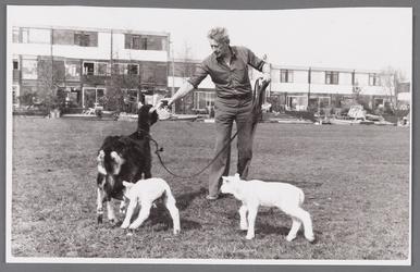 WAT002000951 Huib Bedmer met zijn geiten.