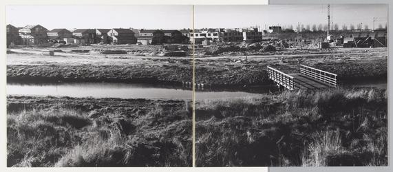 WAT001017729 Rechts: Spoordijk.Links: Moerasvaren en Muurvaren in aanbouw.Wijk de Gors.