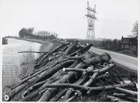 WAT003000131 Omhakken bomen aan Westdijk