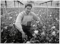WAT003000183 Het bloemenbedrijf