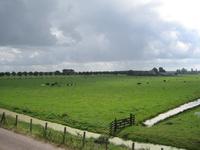 WAT120003307 Weiland links van de stolpboerderij aan de Purmerdijk nummer 14.Weg links achter de Blijweg. (gaat later ...