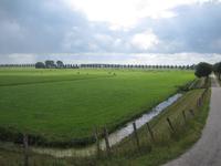 WAT120003311 Foto gemaakt vanaf de Purmerdijk.Rechts zien we de Blijweg (later overgaand in de Westerweg)