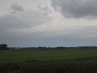 WAT120003334 Weilanden rechts van de stolpboerderij ''Schouwzicht'' aan de Westerweg nummer 74.