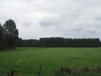 WAT120003401 Weiland achter de stolpboerderij aan de Westerweg nummer 38.