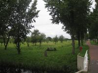 WAT120003424 Aanzicht op de gemeentelijke boomgaard op de hoek van de Groeneweg/Westerweg.Het is bezoekers toegestaan ...