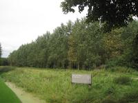 WAT120003452 Aanzicht op een deel van het Purmerbos.