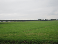 WAT120003500 Weiland links van de woning / smederij van Jaap de Goede, Oosterweg nummer M 5